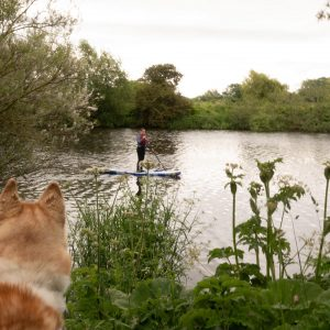 Few more from the big boy camera - paddle boarding today at Preston